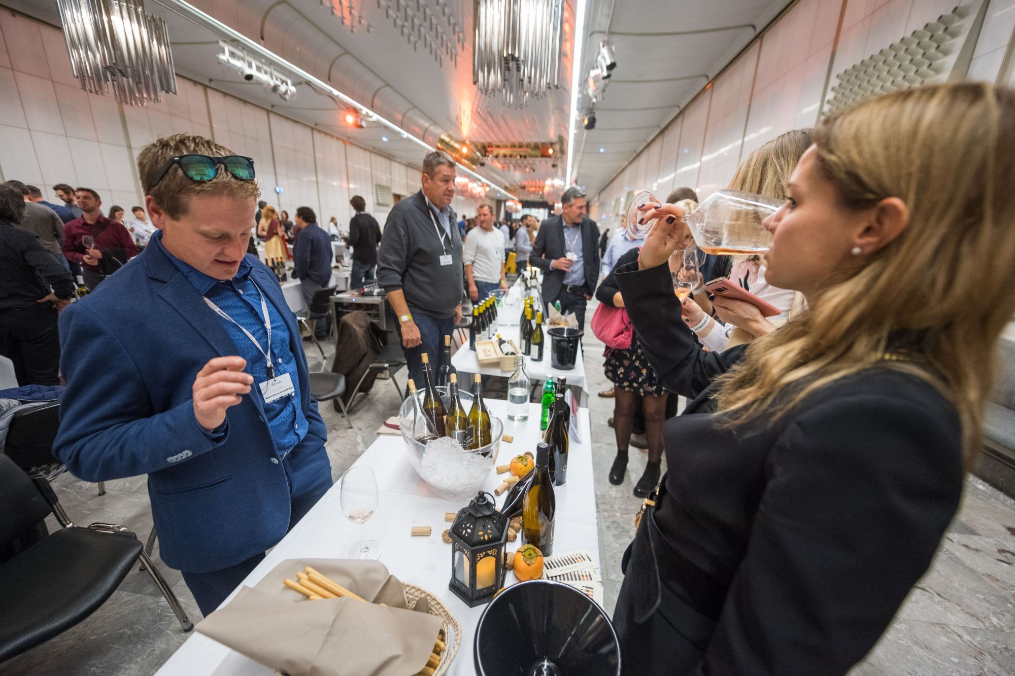 Wine enthusiasts enjoy the Slovenian Wine Festival