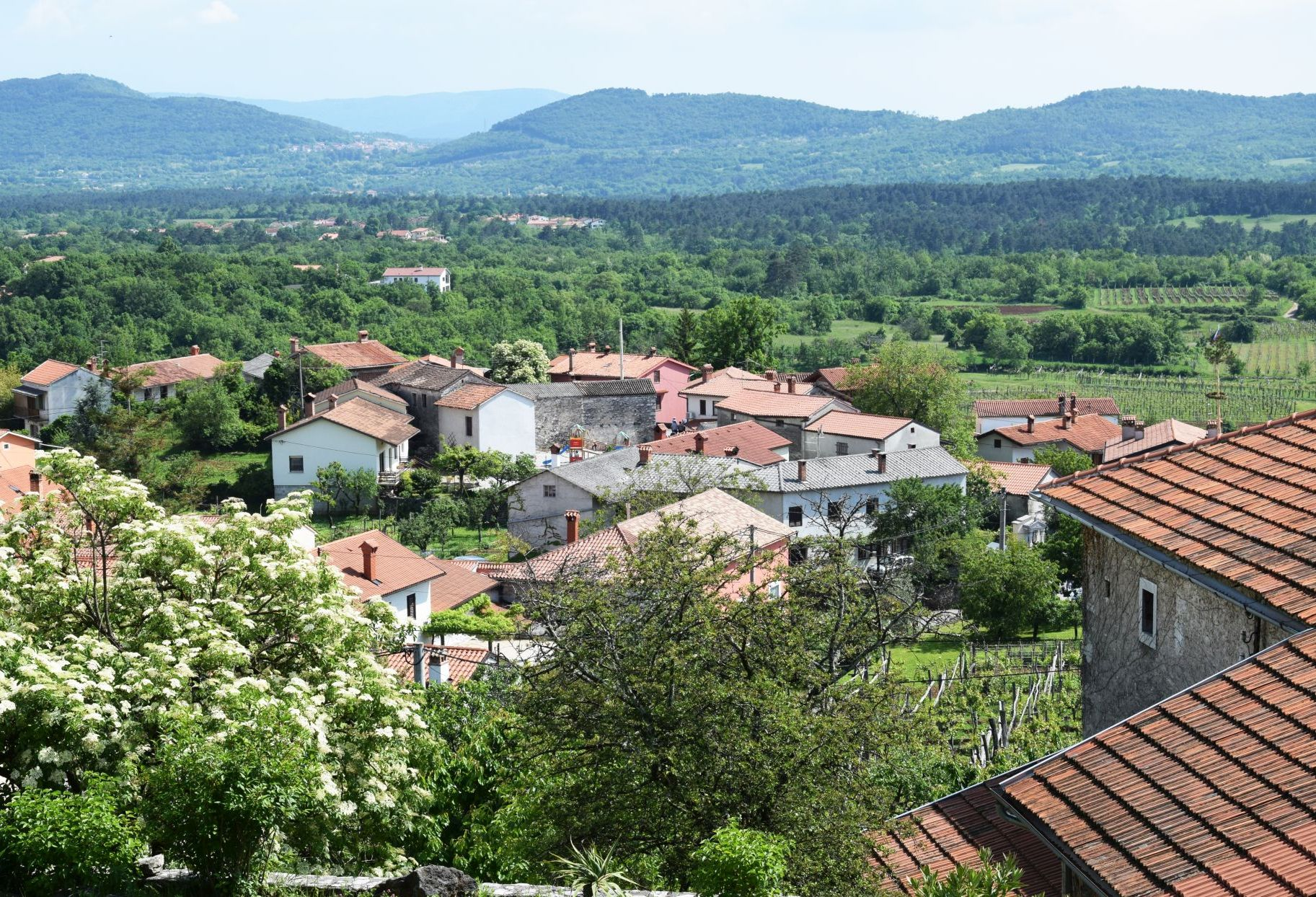View of Tomaj village and vineyards from Tabor Hill
