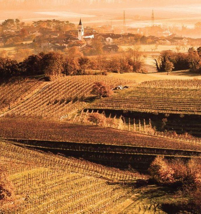 Slap Wine Festival – Vipava Valley, Western Slovenia