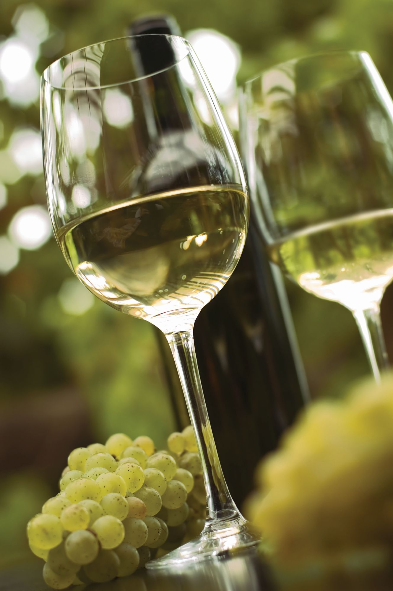 Glass of white wine presented with a bunch of white grapes