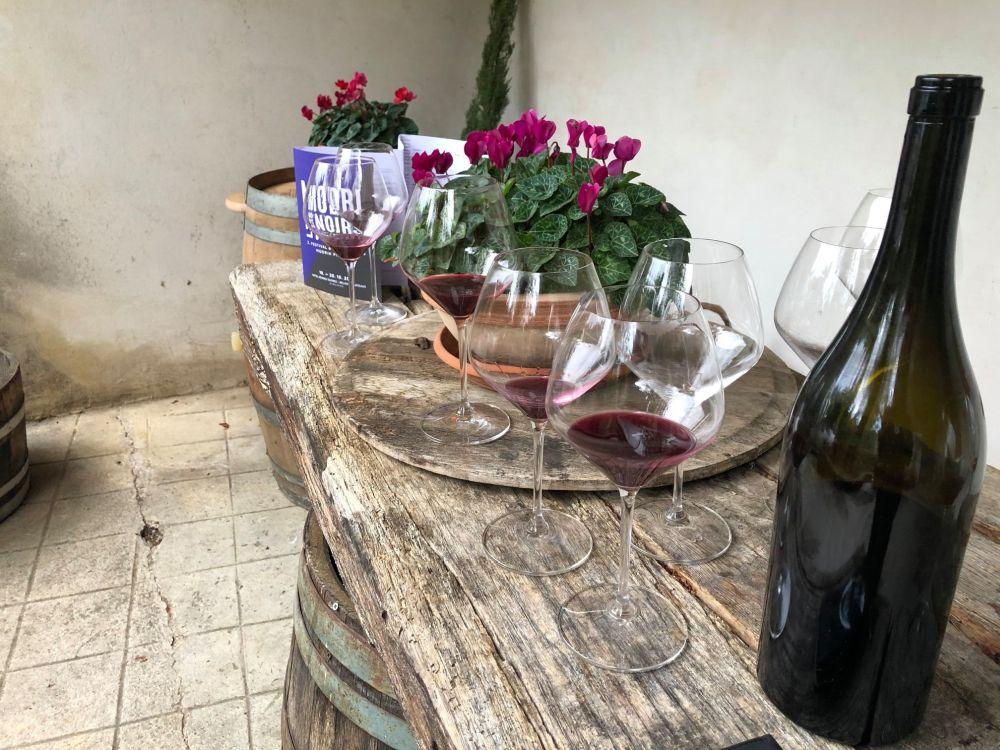 Glasses of wine containing Pinot Noir, at the Modri Les Noir Wine Festival in Idrija, Slovenia
