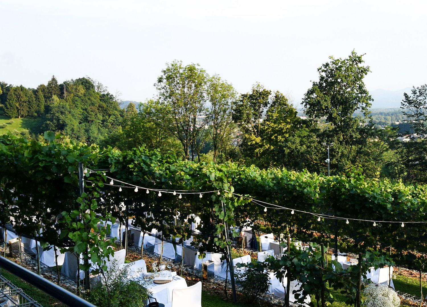 View of the romantic dinner setting at the Ljubljana Castle Vineyard
