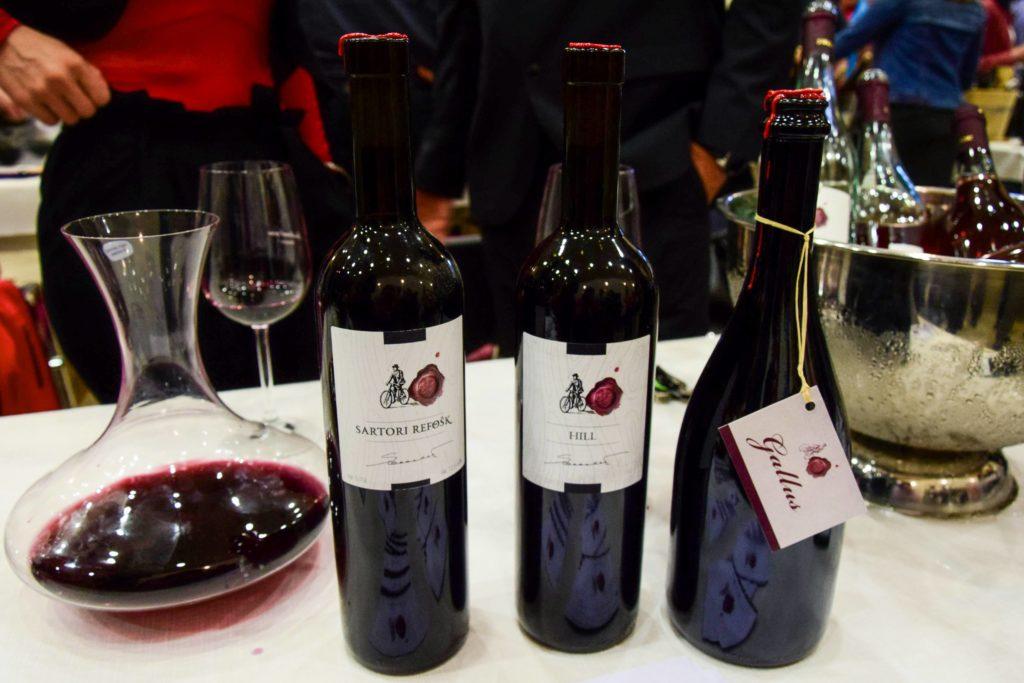 Bottles of red wine on display