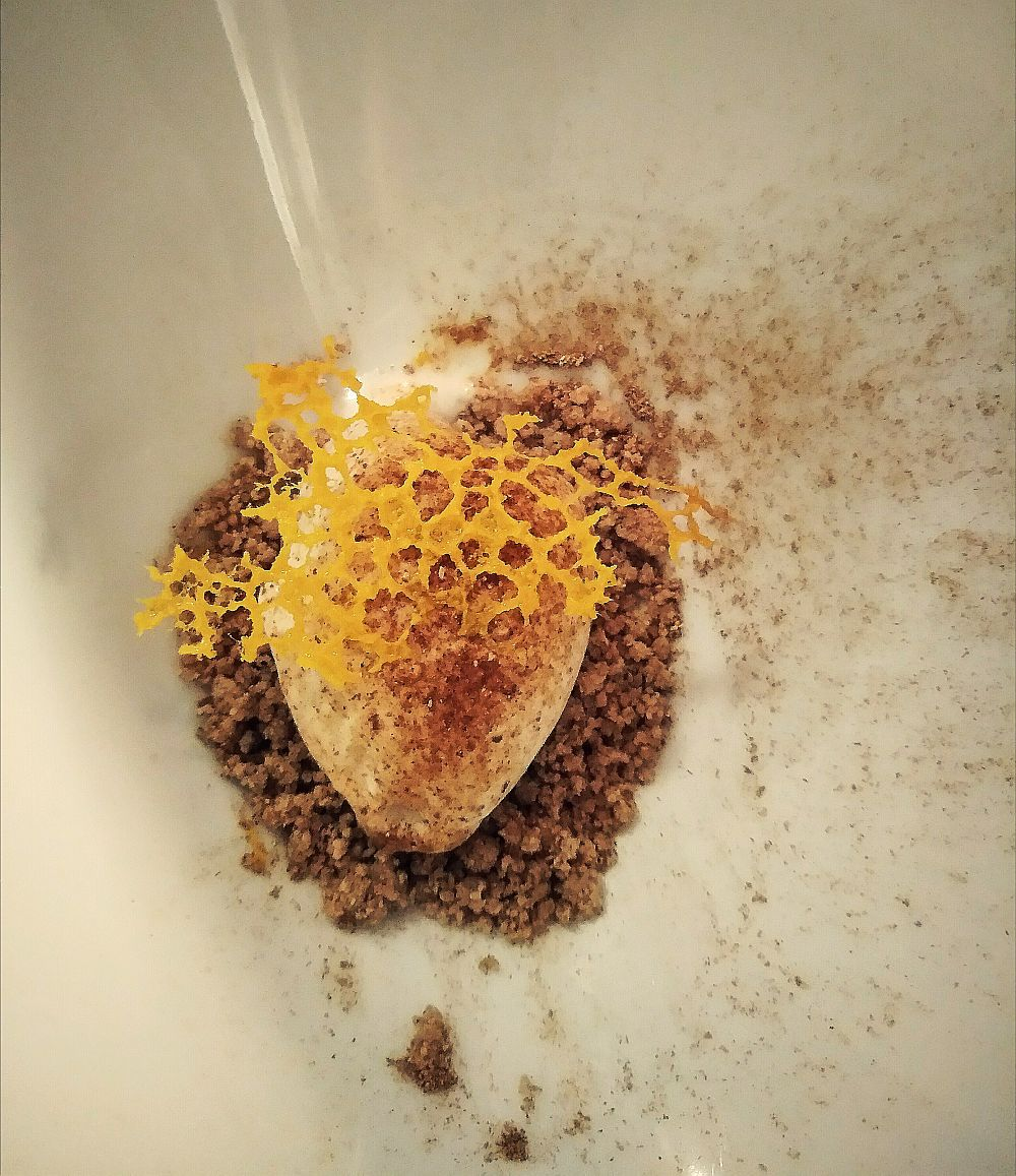 Porcini soup sorbet on buckwheat crumble