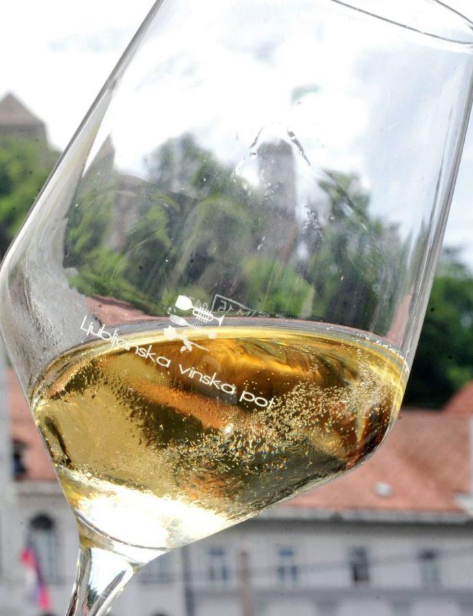 Ljubljana Wine Route – Ljubljana, Central Slovenia