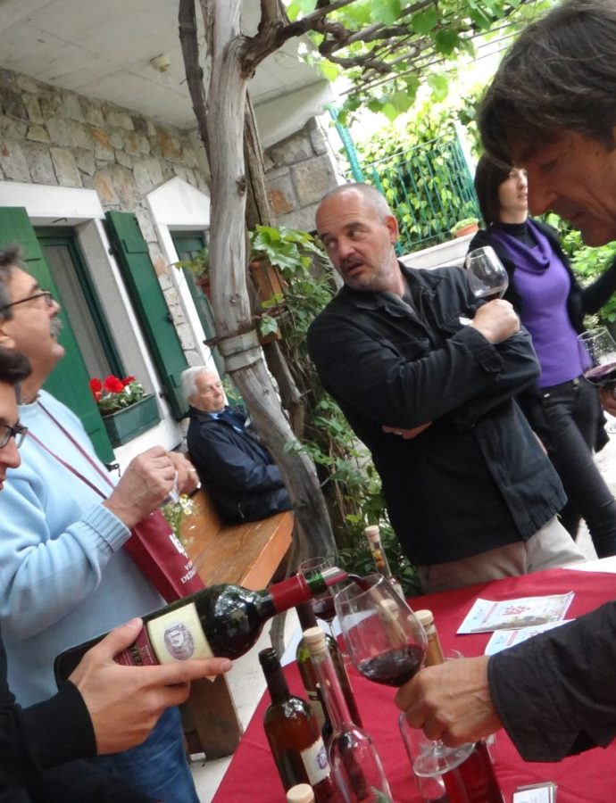 In the heart of the land of Teran wine – Open cellars Day