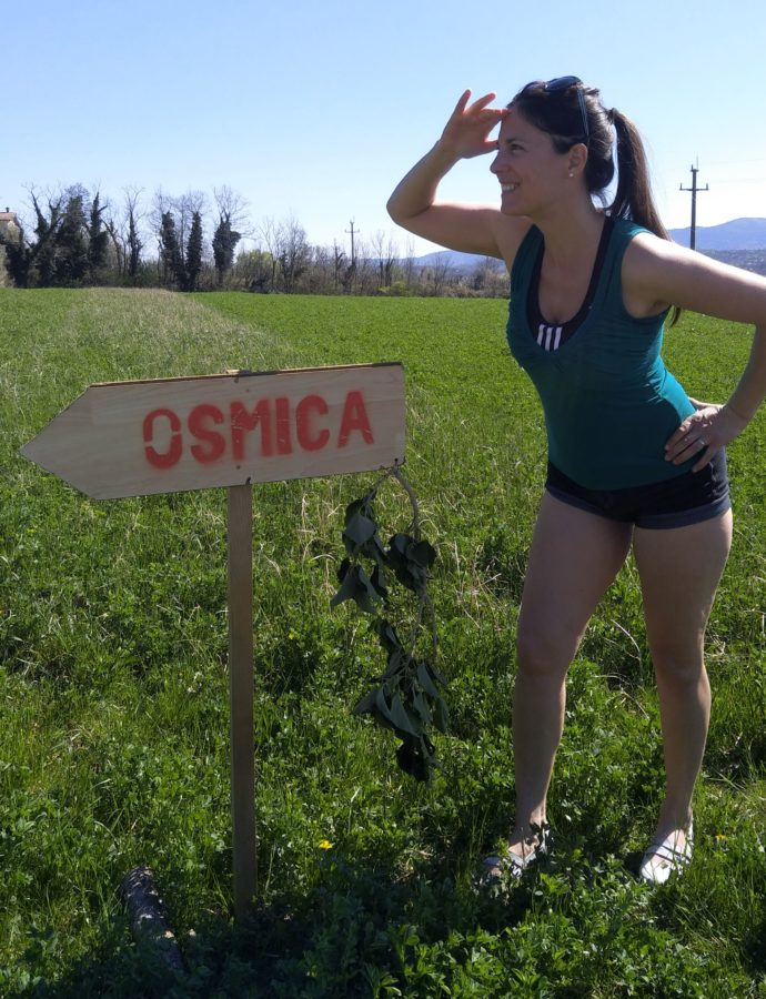 Prosciutto with a Twist | Osmica Vrban