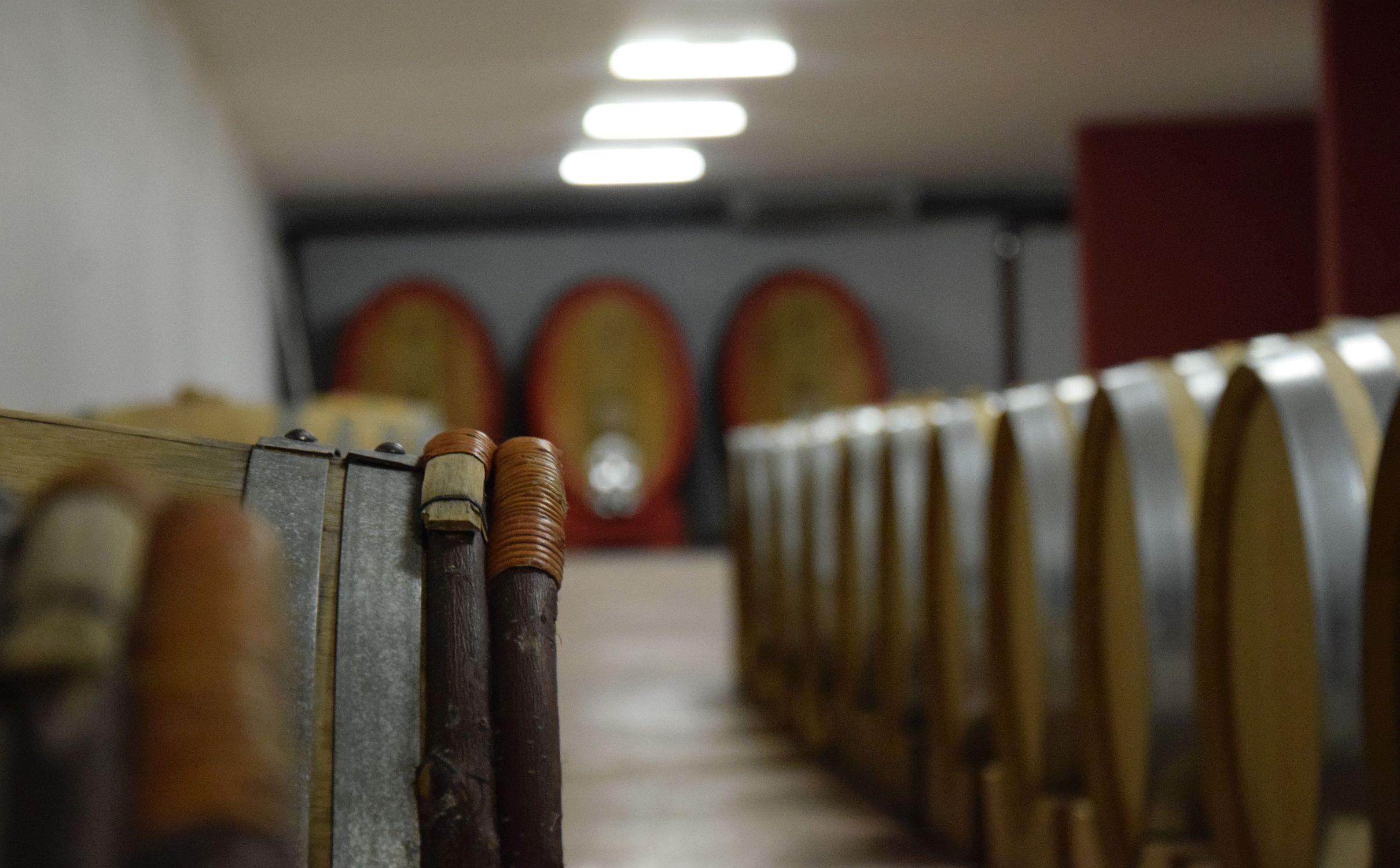 Oak barrels and barriques at Santomas winery