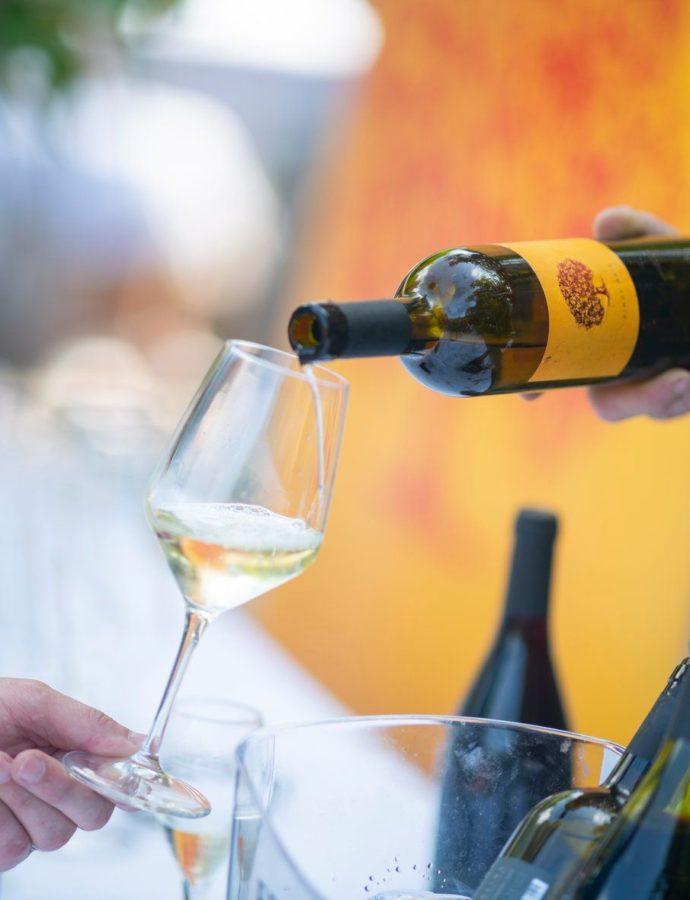 Pinot Noir Celebration — Tilia Estate, Vipava Valley, Western Slovenia